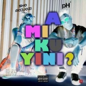 pH - A Mi Ku Yini (What Are They Sayin?) Ft. Sho Madjozi